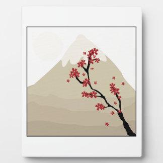 Mt Fuji Plaque