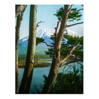 Mt. Fuji Through the Morning Woods Vintage Japan Postcard