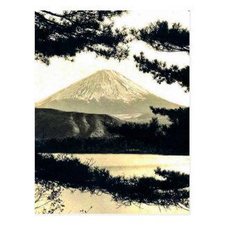 Mt. Fuji Through the Pines Vintage 富士山  Japanese Postcard