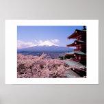 Mt Fuki con Sakura Poster