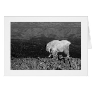 Mt. Goat: For the Young Card