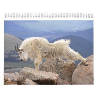 Mt Goats on Mt Evans, Colorado Calendars