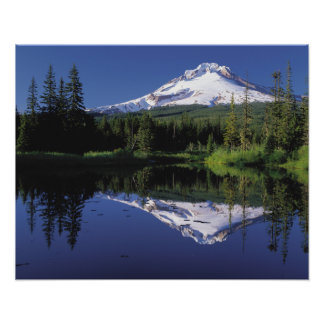 Mt. Hood And A Mirror Lake Poster