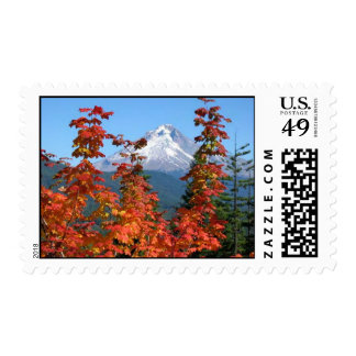 Mt. Hood in Fall Postage