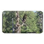 Mt Jefferson Animals Birds Aves Fauna Oregon iPod Touch Case