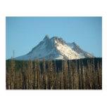 Mt. Jefferson del lago Olallie, 2005 Postales
