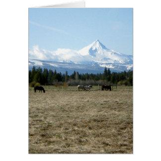 Mt. Jefferson Horses Card