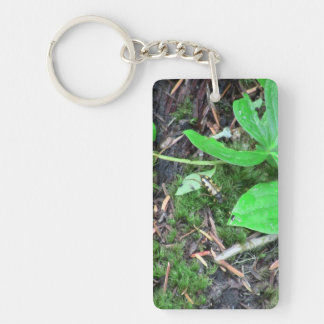 Mt Jefferson Oregon Insects Arachnids Spiders Bug Single-Sided Rectangular Acrylic Keychain