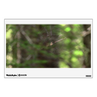Mt Jefferson Oregon Insects Arachnids Spiders Bug Wall Sticker