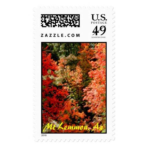 Mt Lemmon, Az Stamps