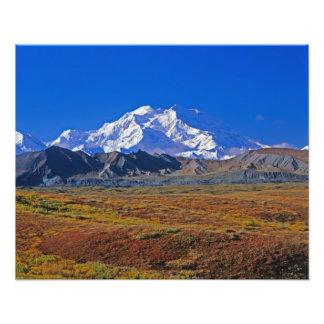 Mt . McKinley Denali National Park , Alaska. Photo Art