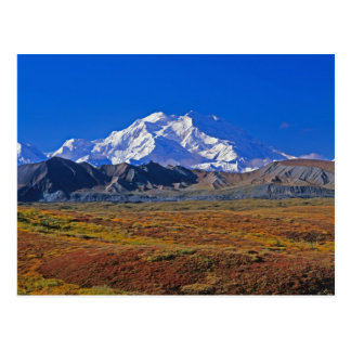 Mt . McKinley Denali National Park , Alaska. Post Cards