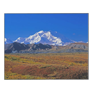 Mt . McKinley Denali National Park , Alaska Wood Wall Art