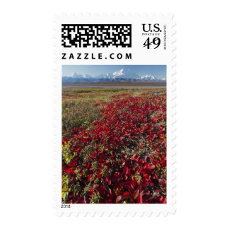 Mt. McKinley towers behind a camp Postage Stamps