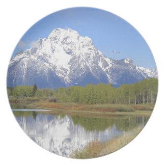 Mt. Moran Grand Teton National Park Plate