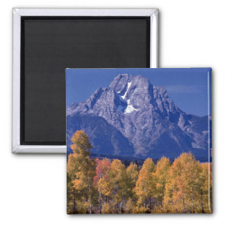Mt. Moran, Grand Teton National Park, Wyoming 2 Inch Square Magnet