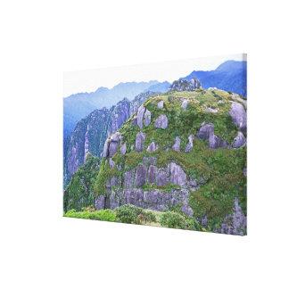 Mt. Nagata, Yakushima, Kagoshima, Japan Canvas Print