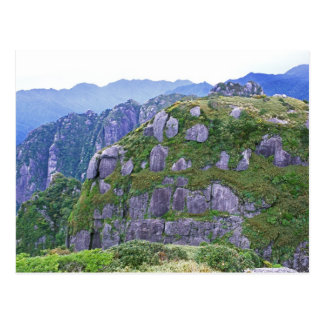 Mt. Nagata, Yakushima, Kagoshima, Japan Postcard