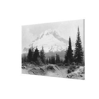 Mt. Opinión de la capilla de la fotografía del cam Lona Estirada Galerías