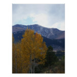 Mt Ouray Posters