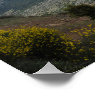 Mt Parnassus Poster