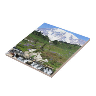 Mt Rainer, Edith Creek Tile