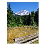 Mt. Rainier National Park Post Cards