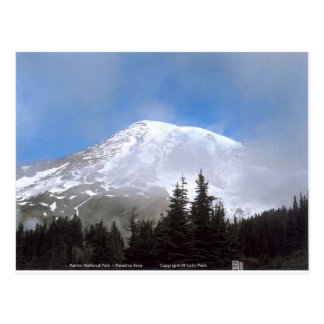 Mt Rainier National Park Snow Scenic Photography Post Cards