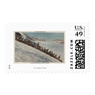 Mt. Rainier, WA - Line of People Sledding in Postage Stamps
