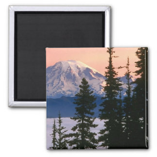 Mt. Ranier, Washington Imán Cuadrado