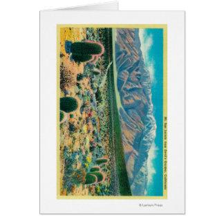 Mt. San Jacinto del jardín del diablo Felicitación