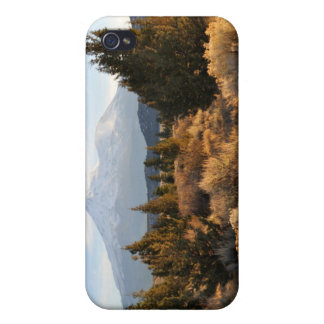 Mt. Shasta in the Fall iPhone 4 Cases