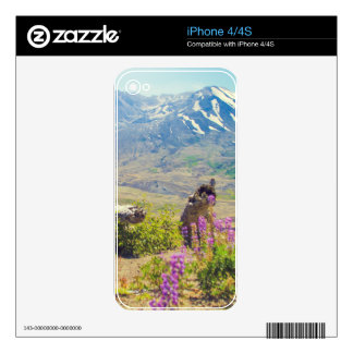 Mt. St. Helens Decals For The iPhone 4S