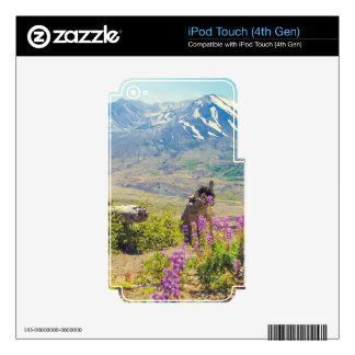 Mt. St Helens iPod Touch 4G Skins