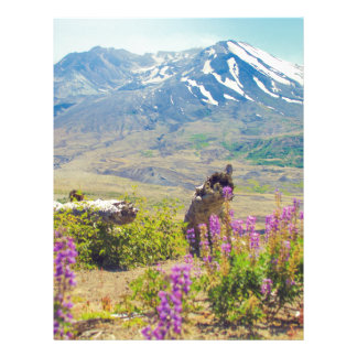 Mt. St. Helens Letterhead