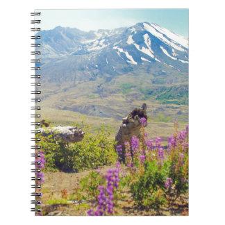Mt. St. Helens Notebook