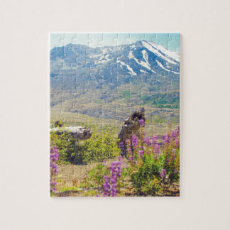 Mt. St. Helens Puzzle