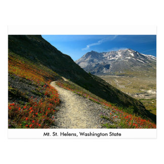 Mt. St. Helens Washington State Postcard