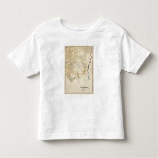 Mt Vernon 1 T-shirt