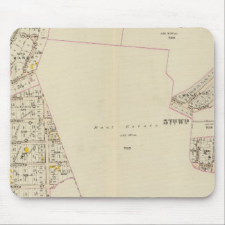 Mt Vernon wards 4-5, New York 2 Mouse Pad