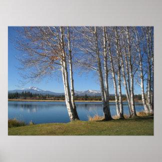 Mt. Washington and Quaking Aspens Poster