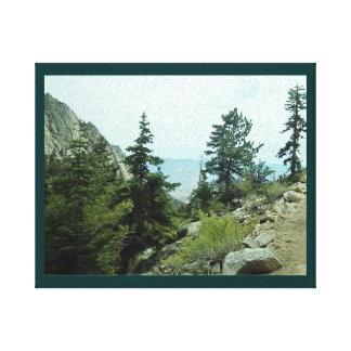 Mt Whitney Trail View #5 Canvas -by Fern Savannah