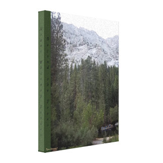 Mt. Whitney Trail View #7 Canvas: Beyond the Trees Canvas Print