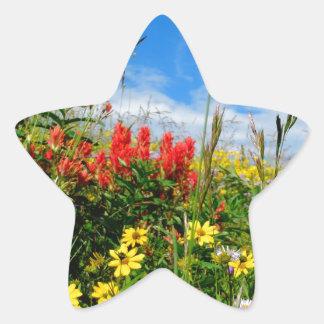 Mt. Wildflowers Star Sticker