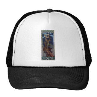 mucha morning star art nouveau poster woman mesh hat