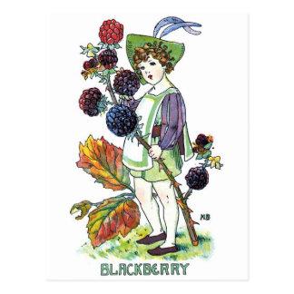 Muchacho de Blackberry Tarjetas Postales