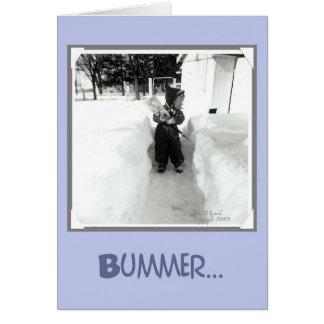 Muchacho del Bummer con la pala de la nieve Felicitaciones