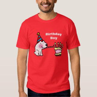 Muchacho del cumpleaños de la celebración del polera