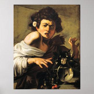 Muchacho mordido por un lagarto, Caravaggio Póster