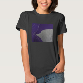 Muchacho plástico púrpura de la burbuja camisas